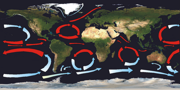 Ocean gyres currents blank