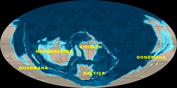 Kambriumartikelbillede1wikimedia