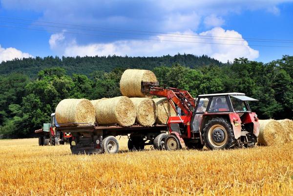 Effektivt landbrug   COLOURBOX5901999
