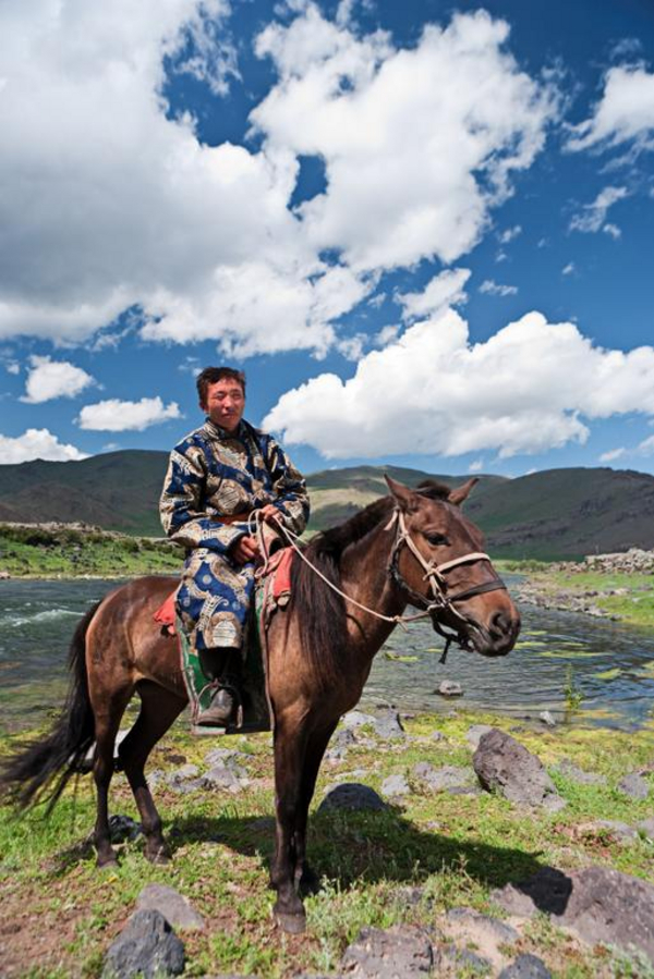 Mongolskhesterytter hadynyah2010 iStockphoto
