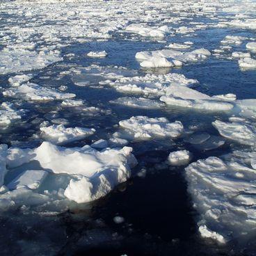 Grønlands klima