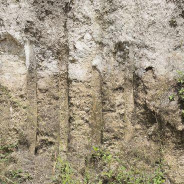 Jordbundsprofiler og jordbundsklassifikation
