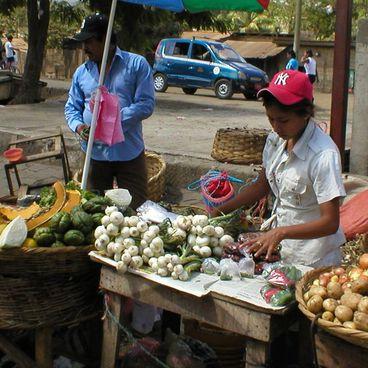 Erhvervsstrukturen i Nicaragua
